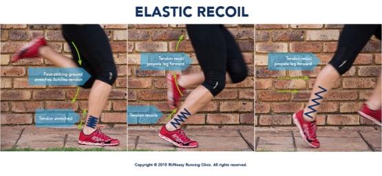 13-3 การสร้างความแข็งแรงของเส้นเอ็นกล้ามเนื้อในนักวิ่ง-6
