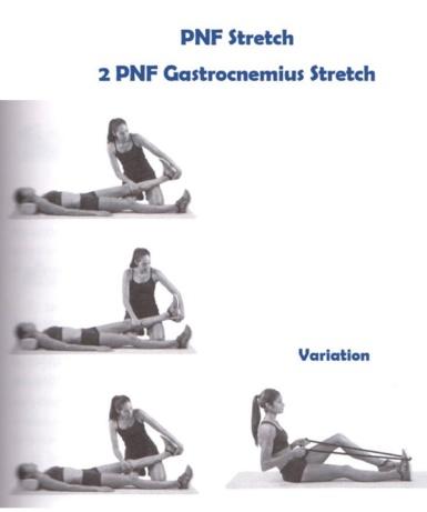 16 การยืดกล้ามเนื้อแบบกระตุ้นการรับรู้ของระบบประสาทและกล้ามเนื้อ