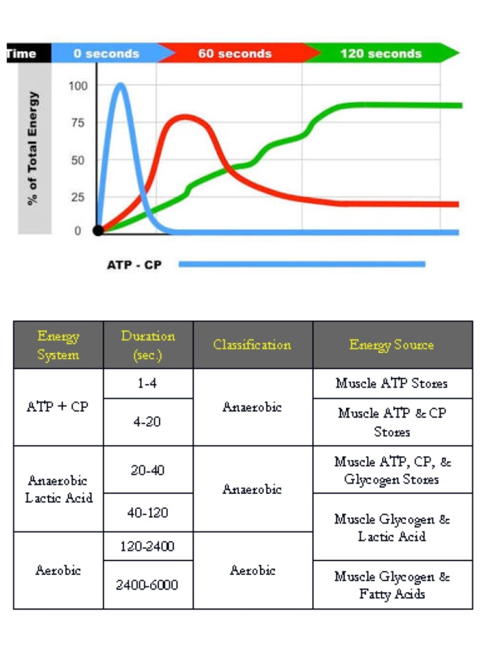 39.1 การสร้างระบบพลังงานสำหรับนักวิ่ง 4