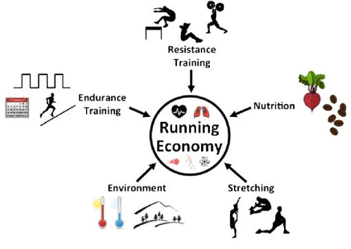 43 - 7 การวิ่งแบบประหยัดพลังงาน 4