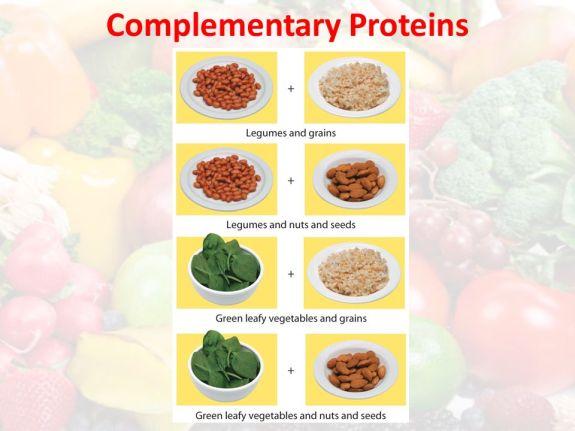 67 การสร้างร่างกายนักวิ่งจากโปรตีน 5